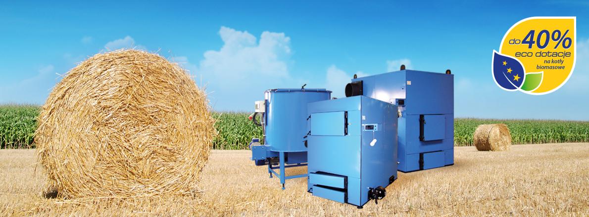 Système de chauffage de la biomasse